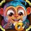 Asva the Monkey