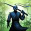 Wojownik ninja: legenda gier walki w cieniu